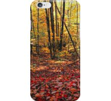 HARDWOOD FOREST,AUTUMN iPhone Case/Skin