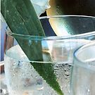 Leaf In A Glass by AmyAutumn