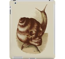 Eternal Home iPad Case/Skin