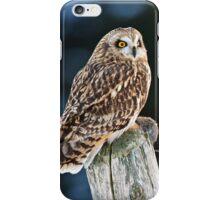 Short Eared Owl  iPhone Case/Skin