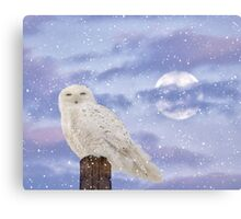Winter solstice Canvas Print