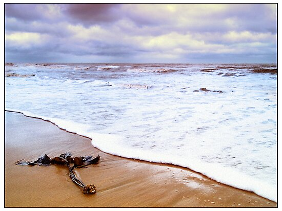 Sea and sand by Paul Tremble