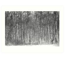 Black and White Park Art Print