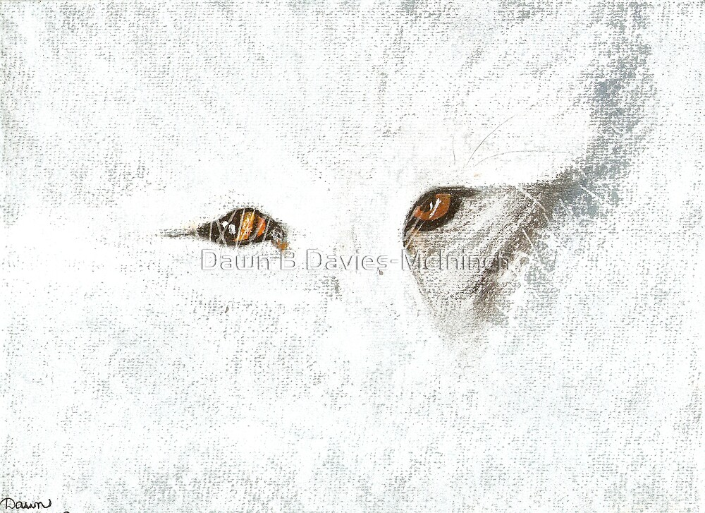 Just a Glimpse by Dawn B Davies-McIninch