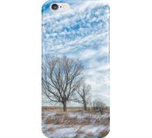 A Dunrobin scene iPhone Case/Skin