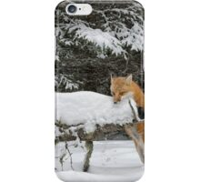 Discovering Snow... iPhone Case/Skin