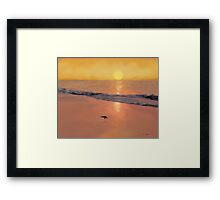 Bird On The Beach Framed Print