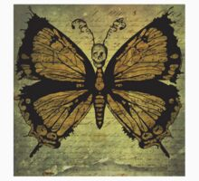 Skull Head Gothic Butterfly by TrippyCat