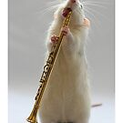 My Clarinet. by Ellen van Deelen