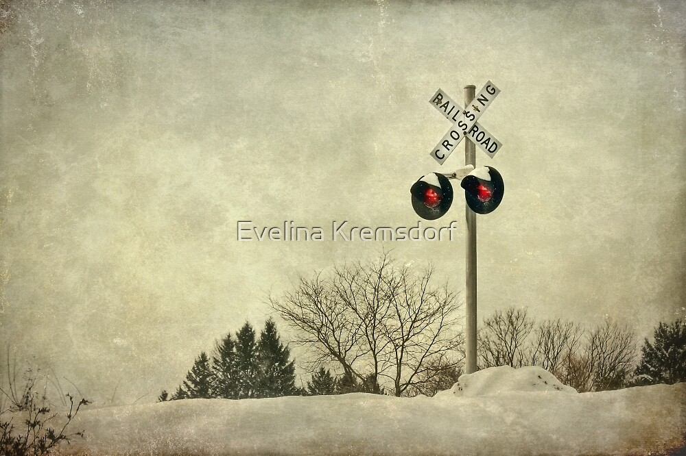 Crossing Over by Evelina Kremsdorf