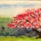 Cherry Tree by Lee Kerr