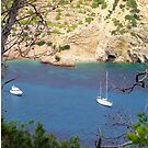 Cala Llonga Bay by Tom Gomez