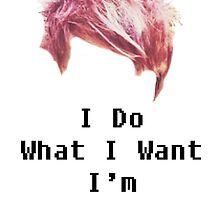 I Do What I Want, I'm PUNK ROCK by alliisafangirl