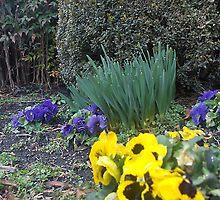 spring by thomas smith