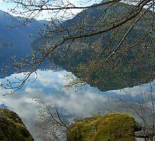 Crescent Lake Reflection by Lynn Bawden