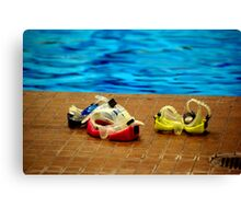Rose Coloured Goggles Canvas Print