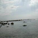 Carribean Ocean by Carlos Mejias