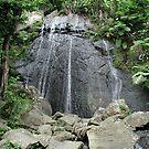 El Yunque by Carlos Mejias