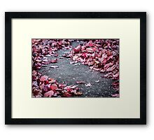 Autumn Leaves on Pavement Framed Print