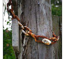 Rusty padlock by Vic Cross