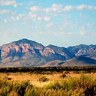 Chiricahua Mountains by redhawk