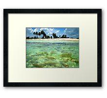Tropical Paradise Framed Print
