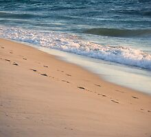 footprints in the sand by Martin Pot