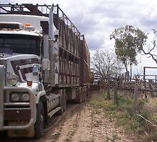 Cattle Truck by Chantel Martin