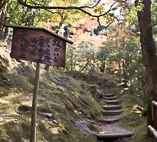 Signs by the path by UchuujinSan