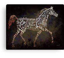 Arabian Beauty in Typography Canvas Print
