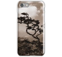 a lonely tree iPhone Case/Skin