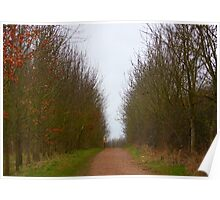The woodland walk Poster