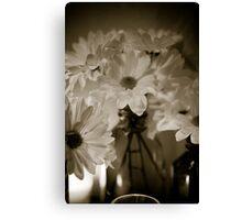 Petals and Light Canvas Print