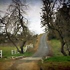 Country Road by CarolM
