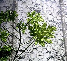Leaf Pattern by gothgirl