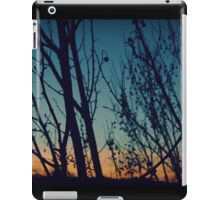 Dancing With the Sunset iPad Case/Skin