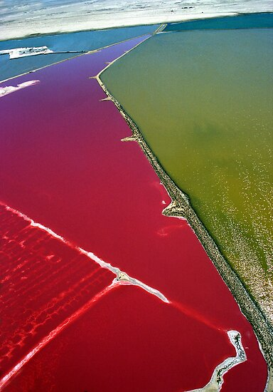 Red salt delta by Michelle Dry