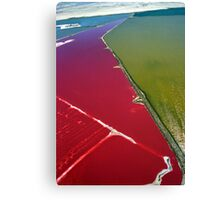 Red salt delta Canvas Print