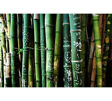 bamboo graffiti Photographic Print