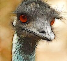 Emu Eyes by Lorraine Deroon