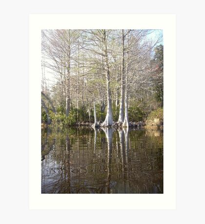 Silver Trees and Knees Art Print