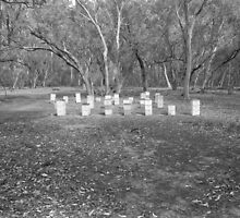 Bee hives, Deddick River by Syd Winer