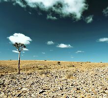 Up from the skies - Namibia by MacLeod