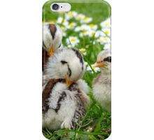 We'll Say It With Daisies - Chicks NZ iPhone Case/Skin
