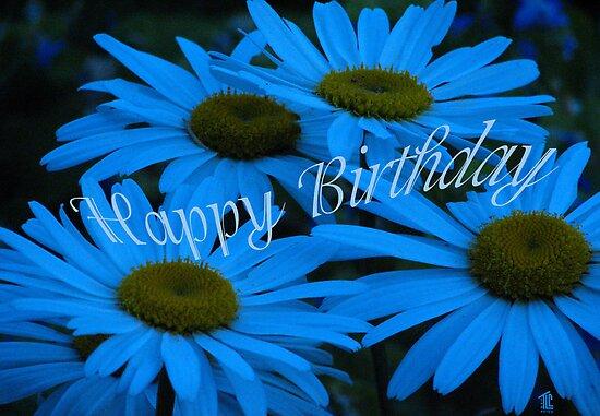 Happy Birthday Blue Daisy by TLCGraphics