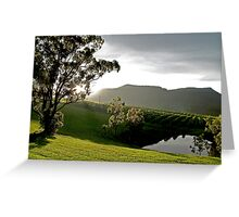 After the Storm # 1 - Audrey Wilkinson Vineyard- Hunter Valley, Australia Greeting Card