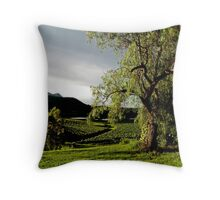 After the Storm # 2 - Audrey Wilkinson Vineyard - Hunter Valley, Australia Throw Pillow
