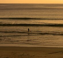 Golden Beaches by Craig Wilson