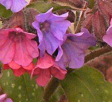 lovely boy girl plant by craneberry1