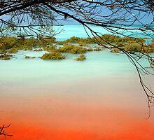 Roebuck Bay by robotsdream